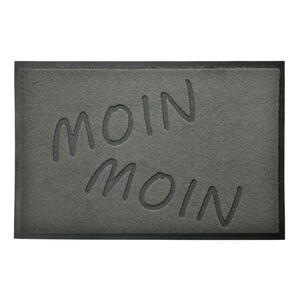 acerto® Premium Fußmatte Schmutzfangmatte MOIN MOIN grau 40x60cm