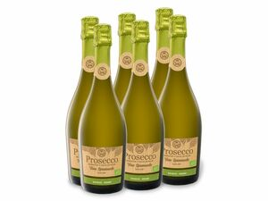 6 x 0,75-l-Flasche Weinpaket BIO Prosecco Spumante DOC