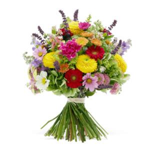 Farbenfroh - | Fleurop Blumenversand