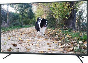 JTC 4K LED Smart-TV Galaxis 5.0 N