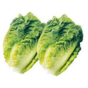 Bauers Beste Salatherzen