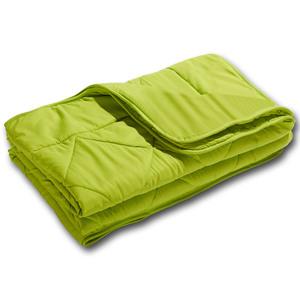 DREAMZONE® Microfaser-Sommer-Steppbett (135x200, grün)