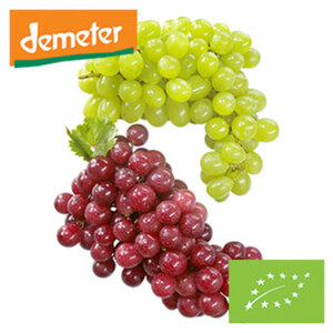DEMETER Bio Italien Tafeltrauben hell oder hell kernlos, Kennzeichung siehe Etikett, jede 300-g-Schale