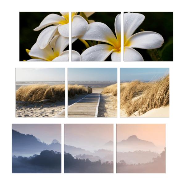 LIVING ART     3er-Bildserie