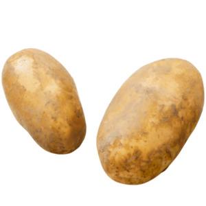 GUT BIO     Bio-Speisefrühkartoffeln