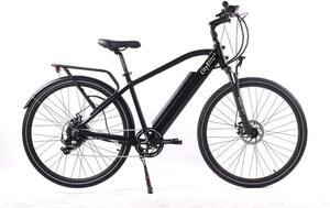 CityBlitz Trekking E-Bike mattschwarz