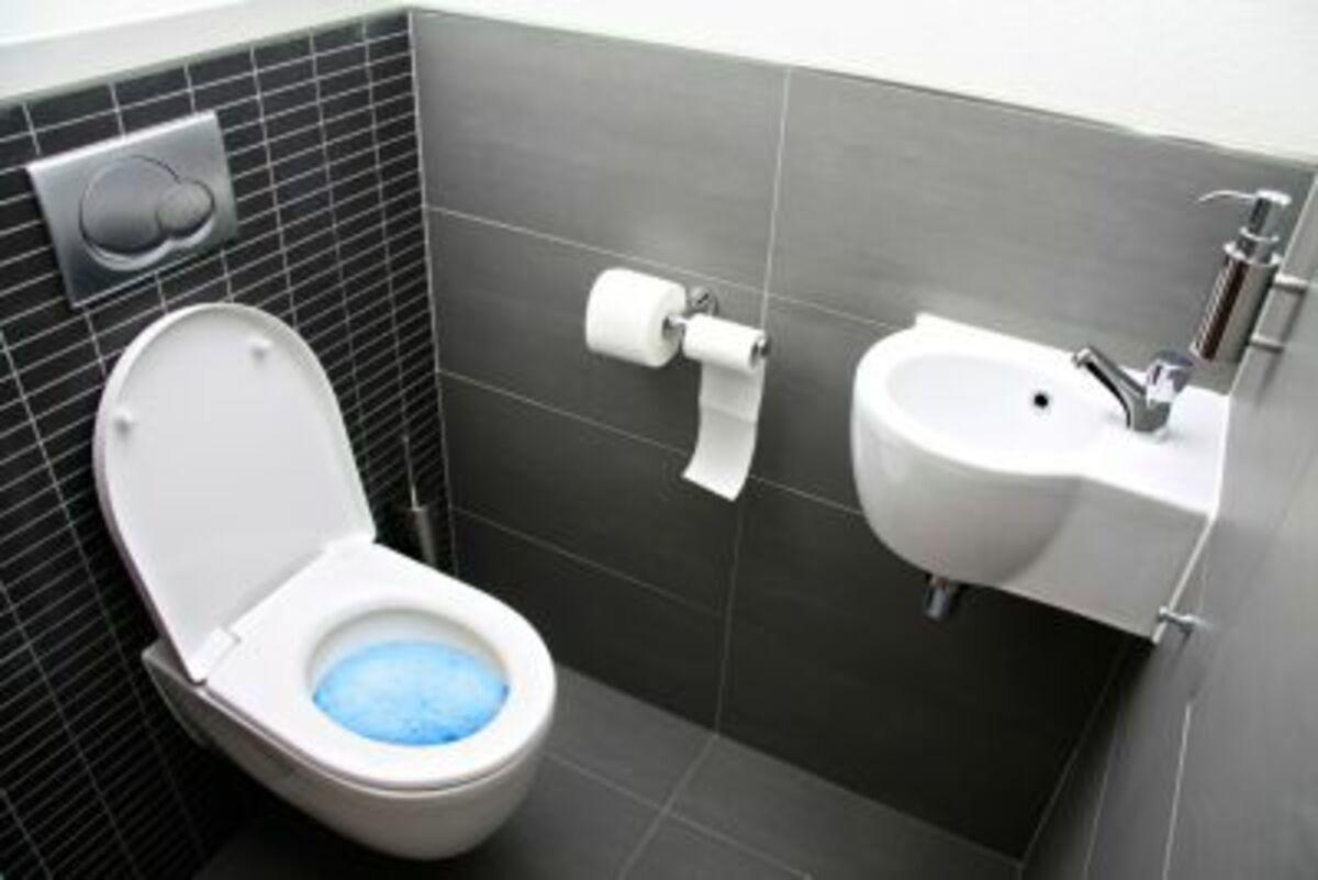 Bild 2 von Clever Clean WC Kraftreiniger, 1kg