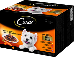 Cesar Favoriten in Sauce 24x 100g