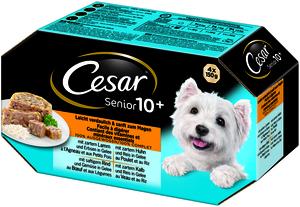 Cesar Senior 10+ in Gelee 4x 150g