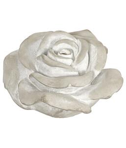Dehner Beton-Rose