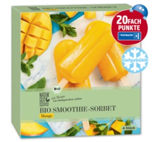 NATURGUT Bio Smoothie Sticks