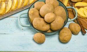 Bioland tegut...Bio-Speisefrühkartoffeln