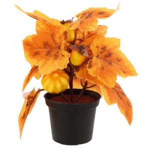 Herbstpflanze