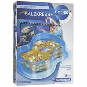 IDEENWELT GALILEO So züchtest Du Salzkrebse