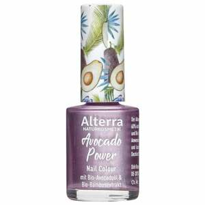 Alterra Nail Colour 06 Metal Power 31.73 EUR/100 ml