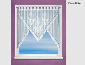 Fensterbild Cole