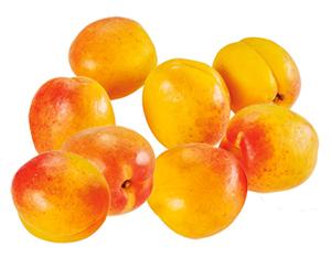 Aprikosen*