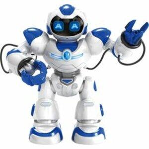 Smart Remote Roboter