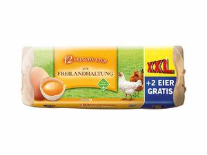 Frische Eier aus Freilandhaltung