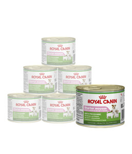 Royal Canin Nassfutter Starter Mousse Mother&Babydog, 12 x 195g
