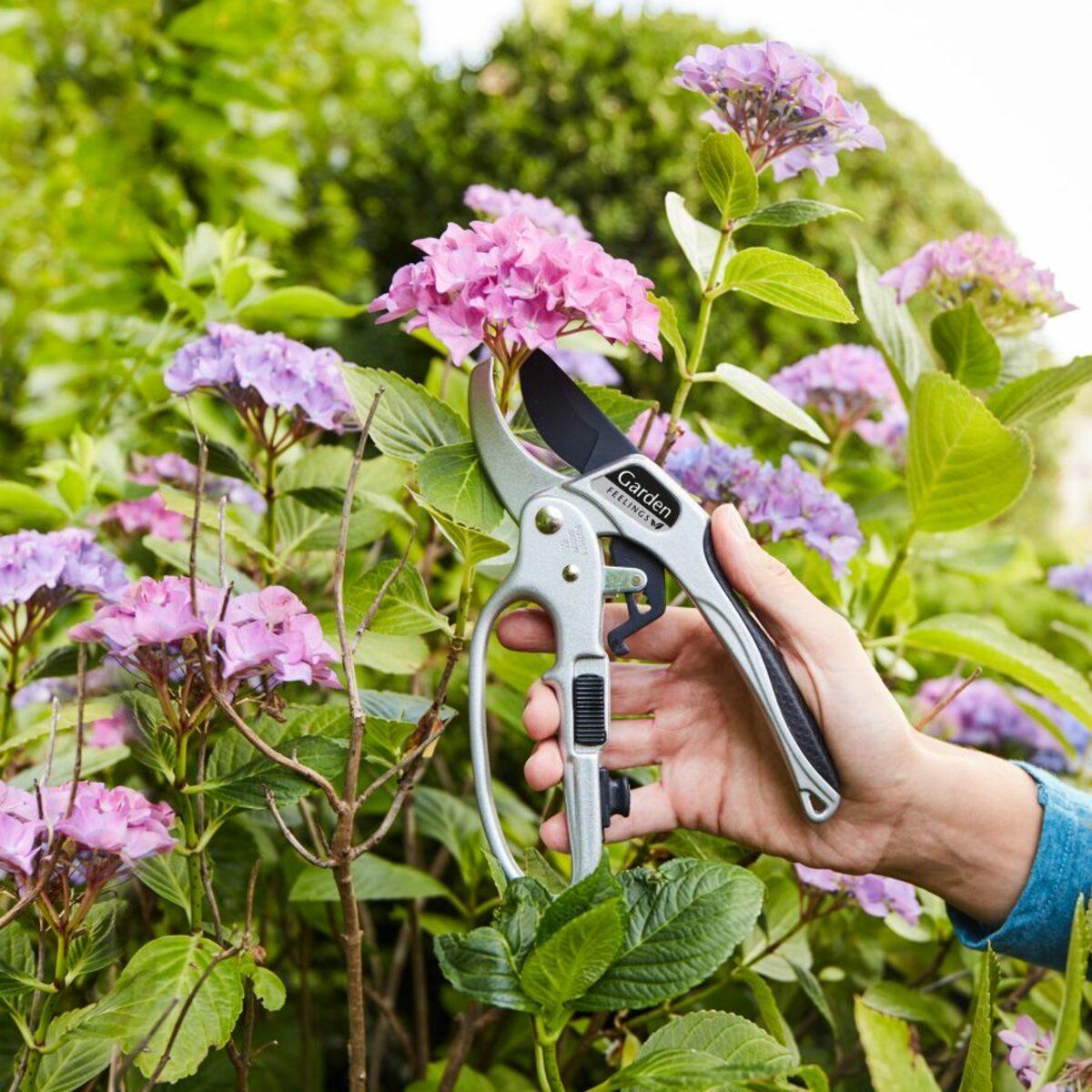 Bild 2 von GARDEN FEELINGS     Gartenschere