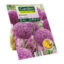 Bild 4 von GARDEN FEELINGS     Zierlauch-Blumenzwiebeln