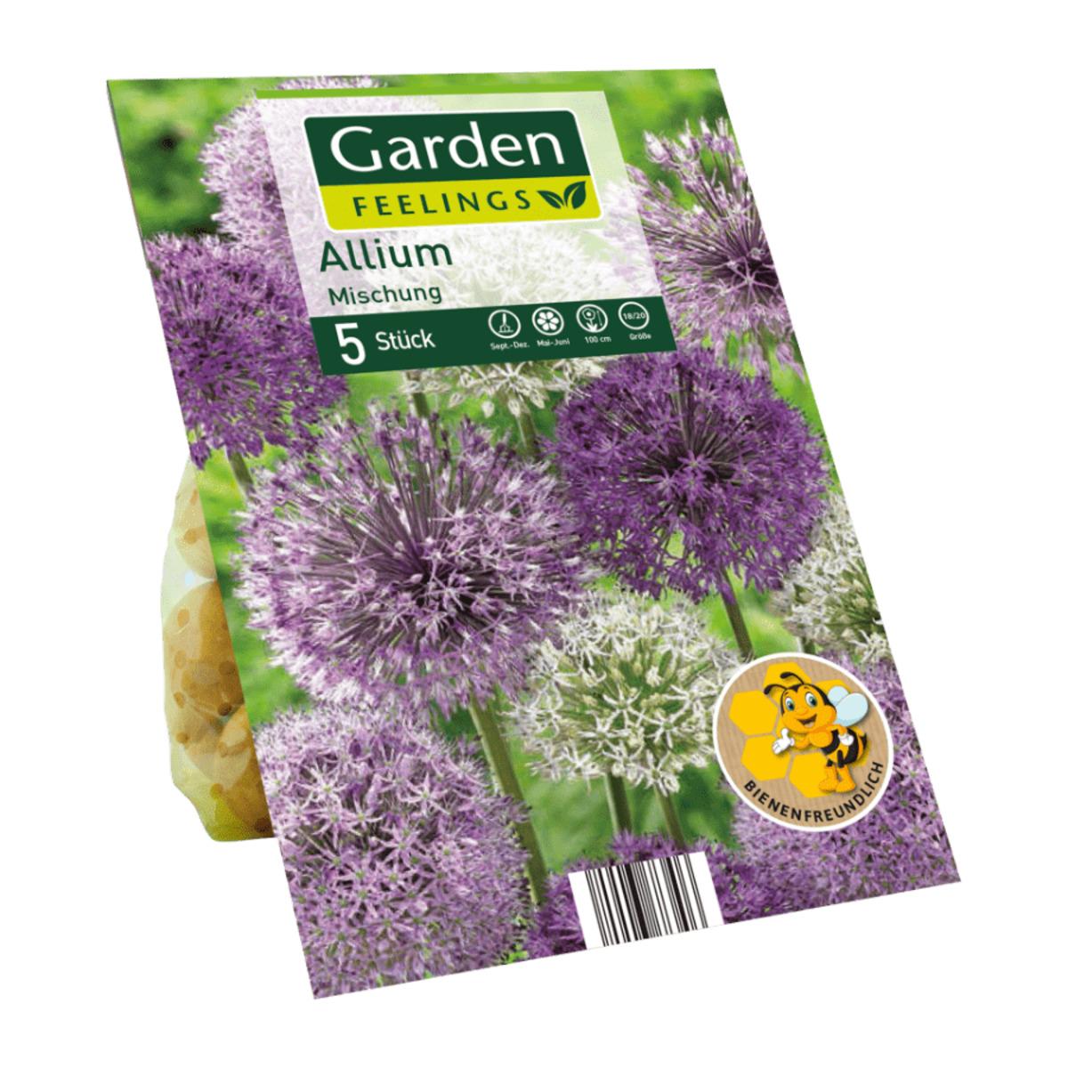 Bild 5 von GARDEN FEELINGS     Zierlauch-Blumenzwiebeln