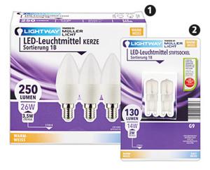 LIGHTWAY®  LED-Leuchtmittel, nicht dimmbar, 2er-/3er-Set