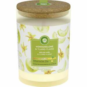Air Wick Duft-Stimmungskerze Honigmelone & Ylang-Ylang 2.70 EUR/100 g
