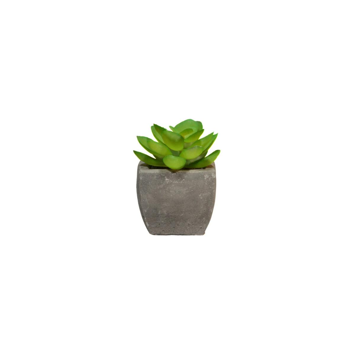 Bild 1 von Mini Fake Pflanze mit Topf 5x5x8cm