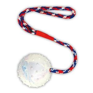 Hundespielzeug Gummiball Ø6cm am Band Ball Spielball