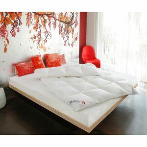 home24 Bettdecke Dreams Gaensedaune