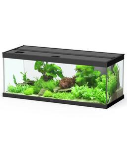 Dehner Aqua Premium ProLine 100 Aquarium-Set