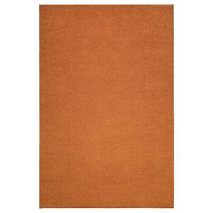 SPORUP                                Teppich Kurzflor, braun, 200x300 cm