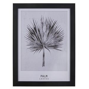 Bild Palm ca.30x40x1,7cm