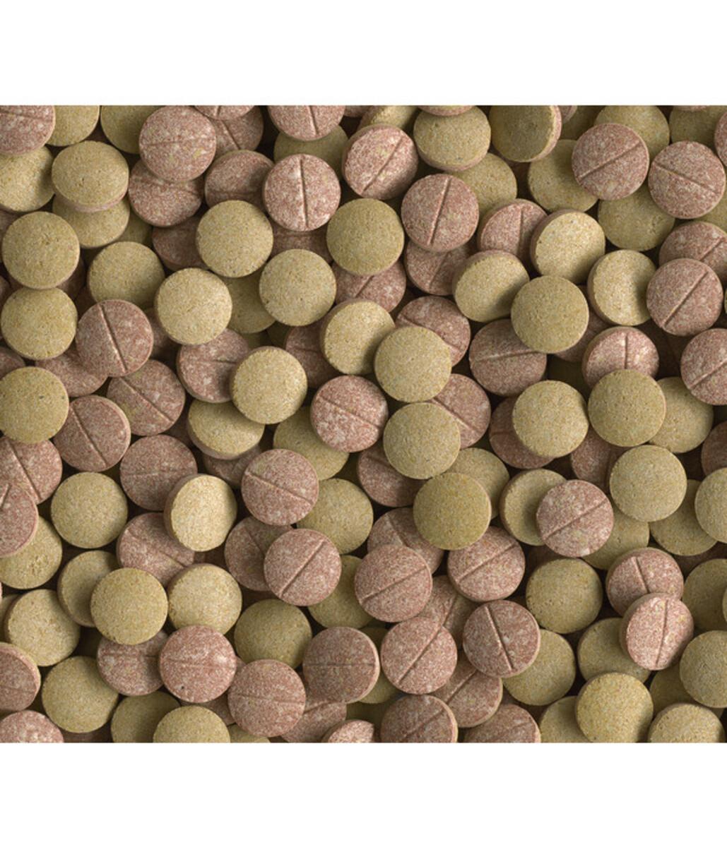 Bild 2 von Tetra Tablets TabiMin XL, 133 Tabletten