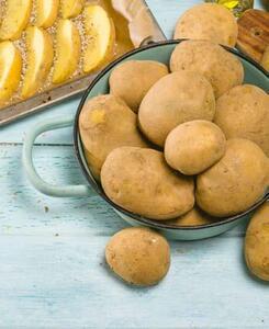 Bioland tegut... Bio-Speisefrühkartoffeln
