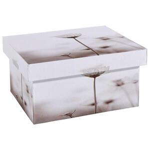 Ambia Home AUFBEWAHRUNGSBOX, Weiß, Beige