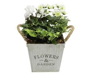 GARDENLINE®  Pflanzenarrangement  im Landhausstil