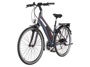 FISCHER E-Bike Trekking 1806, 28 Zoll