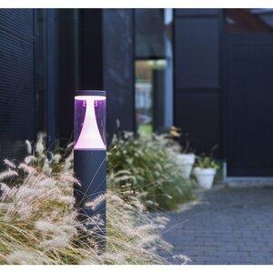 Eco-Light LED-Außensockelleuchte   Spica-WIZ