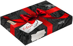 Buch Sebastian Fitzek »Das Geschenk«