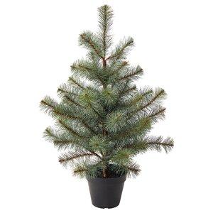 VINTERFEST                                Topfpflanze, künstlich, drinnen/draußen Weihnachtsbaum, 12 cm