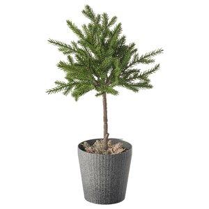 VINTERFEST                                Topfpflanze, künstlich/mit Topf, drinnen/draußen Fichte, Stamm, 10 cm
