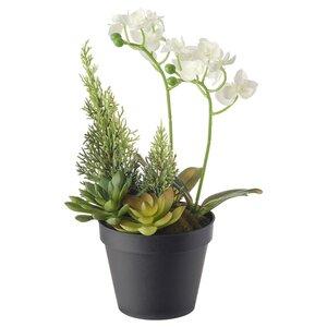 VINTERFEST                                Topfpflanze, künstlich, Arrangement, Orchidee weiß, 12 cm