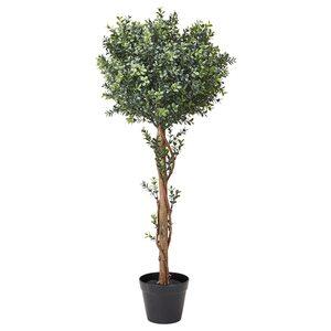 VINTERFEST                                Topfpflanze, künstlich, drinnen/draußen Buchsbaum, Stamm, 17 cm