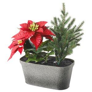 VINTERFEST                                Topfpflanze, künstlich/mit Topf, Arrangement, oval rot