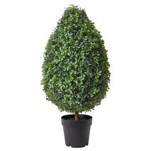 VINTERFEST                                Topfpflanze, künstlich, drinnen/draußen Buchsbaum, 19 cm