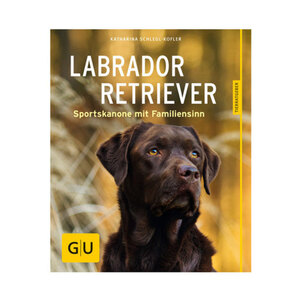 GU Labrador Retriever