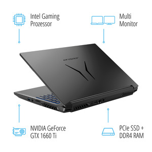 "MEDION ERAZER® P15805, Intel® Core™ i7-9750H, Windows 10 Home, 39,6 cm (15,6"") FHD Display, GTX 1660 Ti, 512 GB SSD, 1 TB HDD, 16 GB RAM, Core Gaming Notebook"